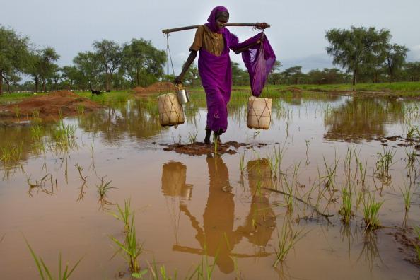 Crockery「Sudan Refugee Crisis Worsens」:写真・画像(16)[壁紙.com]