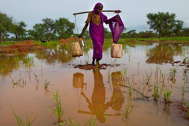 Sudan Refugee Crisis Worsens:ニュース(壁紙.com)