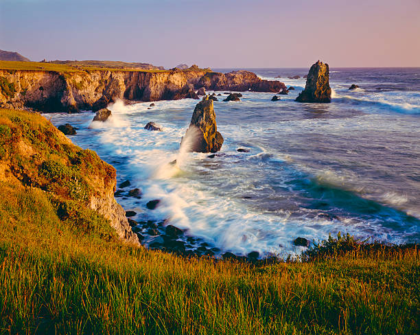 California Coastline  (P):スマホ壁紙(壁紙.com)