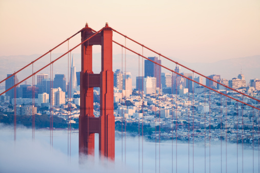 San Francisco - California「USA, California, San Francisco, Golden Gate Bridge in fog」:スマホ壁紙(17)