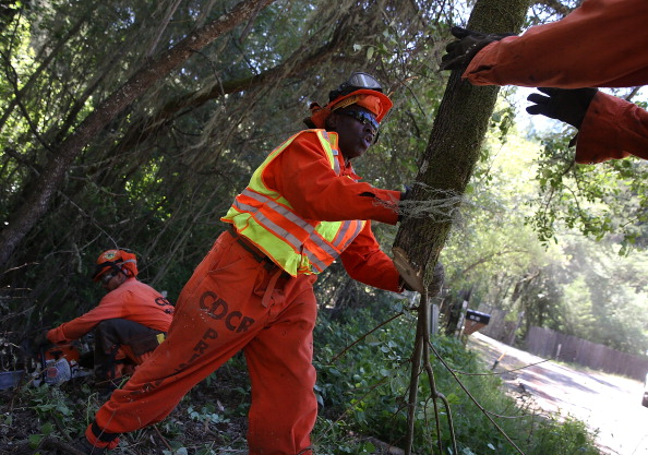 Environmental Damage「Inmate Fire Crews Remove Brush As Fire Season Begins Early In Northern California」:写真・画像(16)[壁紙.com]