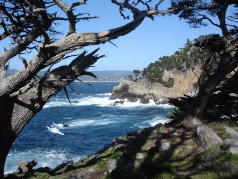 California State Route 1「California Coastal scene near Monterey」:スマホ壁紙(18)