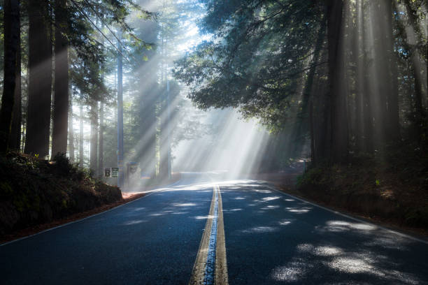 USA, California, Highway 1, sunbeams:スマホ壁紙(壁紙.com)