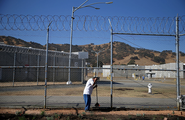 USA「Inmates At California Prison Install Drought-Tolerant Garden」:写真・画像(13)[壁紙.com]