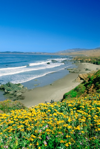 Big Sur「USA, California, San Simeon, High angle view of a beach」:スマホ壁紙(0)