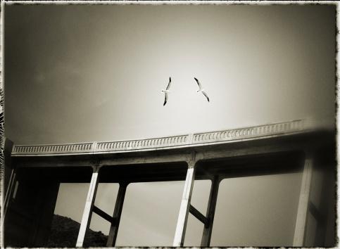 Bixby Creek Bridge「USA, California, Big Sur, seagulls flying near Bixby bridge」:スマホ壁紙(12)