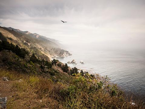 Big Sur「USA, California, Pacific Coast, National Scenic Byway, Big Sur, ragged coastline」:スマホ壁紙(12)