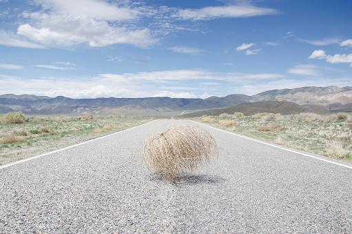 Cumulus Cloud「USA, California, Empty road with tumbleweed」:スマホ壁紙(0)