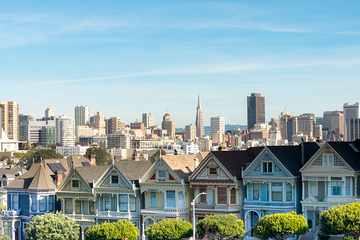 19th Century「USA, California, San Francisco, Painted Ladies, Victorian houses at Alamo Square and San Francisco Skyline with Transamerica Pyramid」:スマホ壁紙(19)