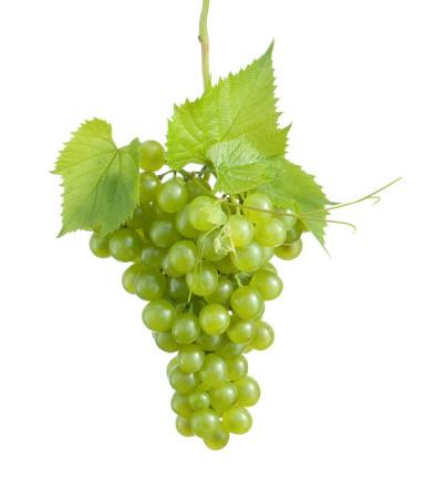 Grape「grape cluster」:スマホ壁紙(3)