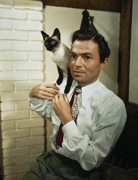 Pet Owner「Mason With Siamese」:写真・画像(5)[壁紙.com]
