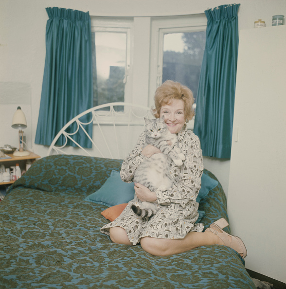 Tabby Cat「Beryl On The Bed」:写真・画像(2)[壁紙.com]
