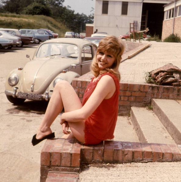 Photoshot「Carol Hawkins」:写真・画像(11)[壁紙.com]