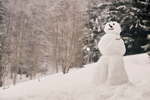 雪だるま「Winter Breaks」:スマホ壁紙(4)