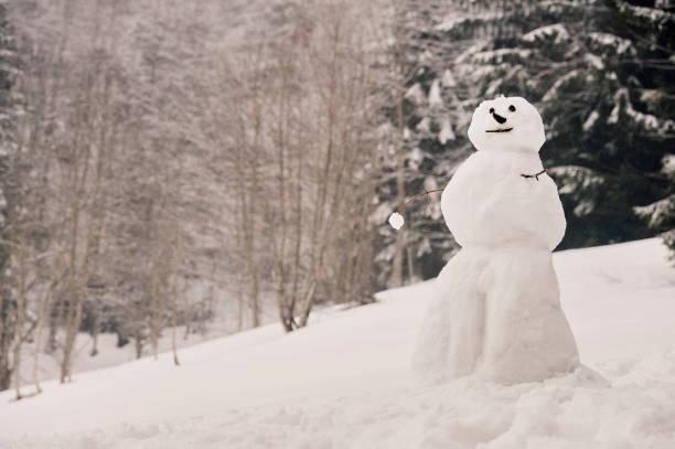 Winter Breaks:スマホ壁紙(壁紙.com)
