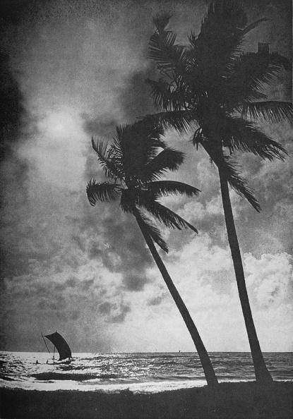 Sri Lanka「'The Palm Fringed Shore at Sunset', c1890,」:写真・画像(11)[壁紙.com]