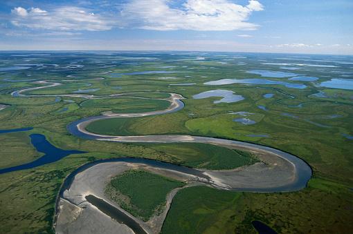 Arctic National Wildlife Refuge「Tundra in Alaska」:スマホ壁紙(18)