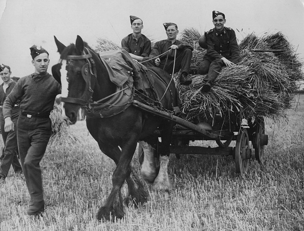 Home Front「Army Harvest」:写真・画像(6)[壁紙.com]