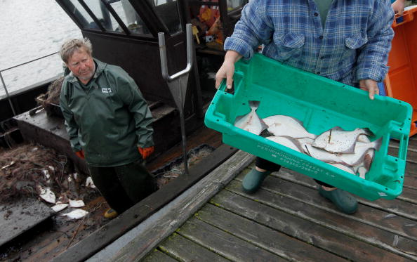 Fisherman「Baltic Sea Fishermen Face Uncertain Future」:写真・画像(4)[壁紙.com]