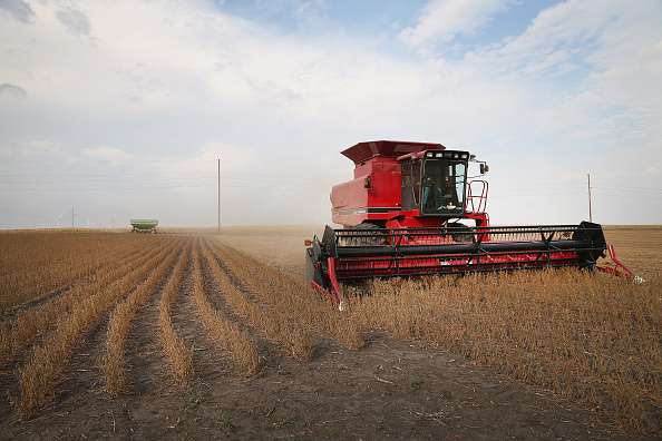 Agriculture「U.S. Farm Earnings Drop 14.6 Percent In Third Quarter AFter A Decline In Output」:写真・画像(6)[壁紙.com]