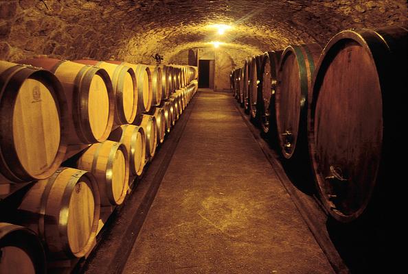 Architectural Feature「Wine cellar in Kapfenstein, Styria」:写真・画像(13)[壁紙.com]