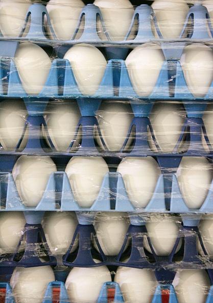 Scott Olson「Pasteurized Eggs Become Popular Amid Bird Flu Concerns」:写真・画像(15)[壁紙.com]