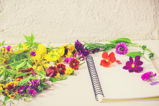 かえでの葉「Preparing blossoms for pressing」:スマホ壁紙(5)