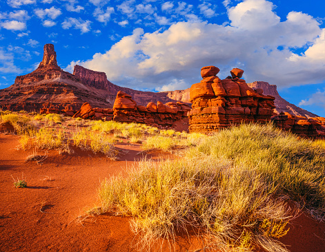 Utah「Dead Horse Point State Park from BLM LAND, Utah(P)」:スマホ壁紙(0)