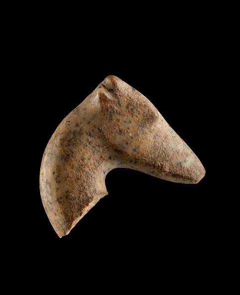 Archaeology「Stone Figurine Fragment; Head Of Gazelle」:写真・画像(15)[壁紙.com]