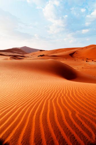 Extreme Terrain「Desert pattern」:スマホ壁紙(1)