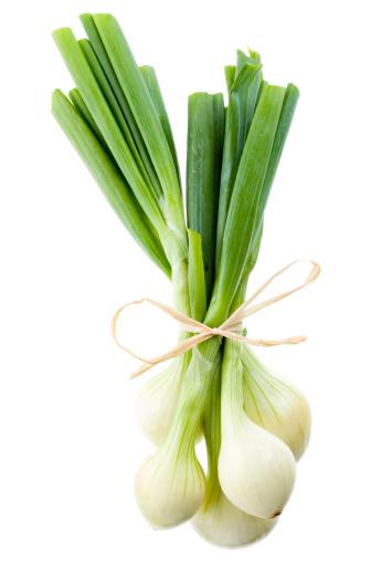 Scallion「Spring onions」:スマホ壁紙(6)