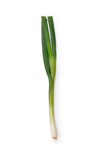 Scallion「Spring Onion」:スマホ壁紙(5)