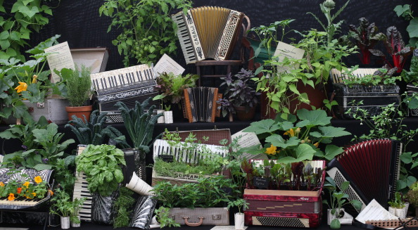 Accordion - Instrument「Final Preparations Are Made For The Hampton Court Palace Flower Show」:写真・画像(5)[壁紙.com]