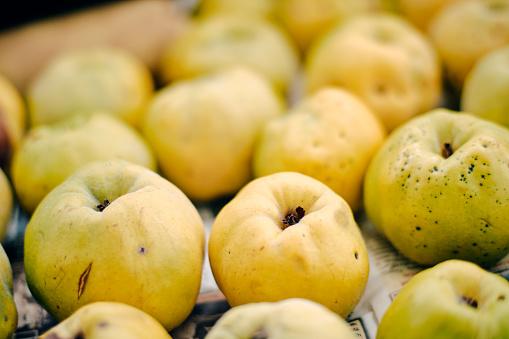 カリン「Ripe quinces」:スマホ壁紙(0)