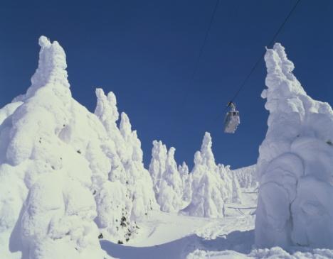 Aerial tramway「Trees in winter, Yamagata Prefecture, Honshu, Japan」:スマホ壁紙(17)