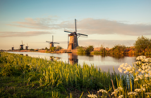 Canal「Windmills in Kinderdijk (Netherlands)」:スマホ壁紙(3)