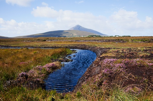 アキル島「Water Source In Irish Bog; Achill Island, County Mayo, Ireland」:スマホ壁紙(2)