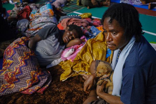 動物「Flash Floods Hit Indonesia's Papua Province」:写真・画像(4)[壁紙.com]
