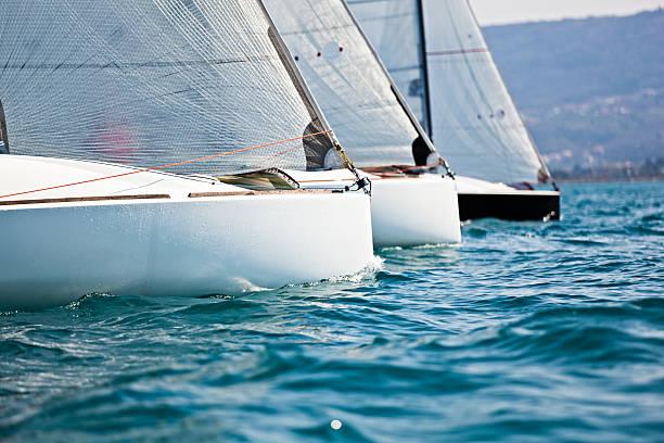regatta:スマホ壁紙(壁紙.com)