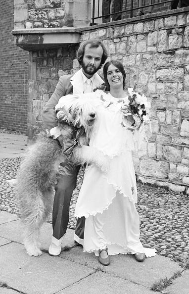Bride「John Peel's Wedding」:写真・画像(18)[壁紙.com]