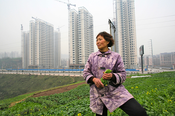 Chongqing「A local farmer picks crops as new residential housing is constructed in outer Chongqing.」:写真・画像(6)[壁紙.com]