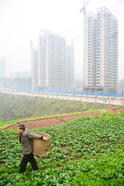 A local farmer picks crops as new residential housing is constructed in outer Chongqing.:ニュース(壁紙.com)