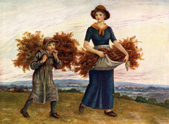 Bracken「'The bracken gatherers'  by Kate Greenaway.」:写真・画像(16)[壁紙.com]