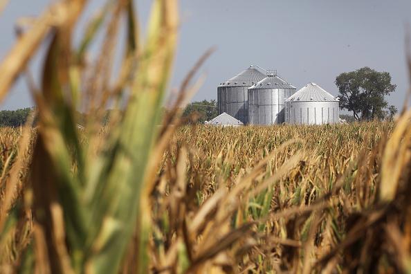 Farm「Severe Midwest Drought Continues」:写真・画像(4)[壁紙.com]