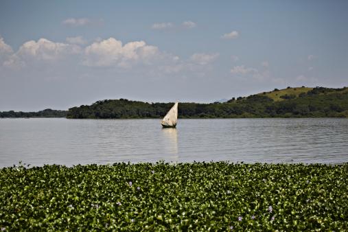 Lake Victoria「Boat in Lake Victoria」:スマホ壁紙(0)