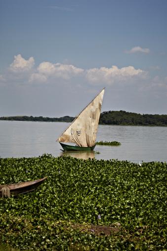 Lake Victoria「Boat in Lake Victoria」:スマホ壁紙(10)