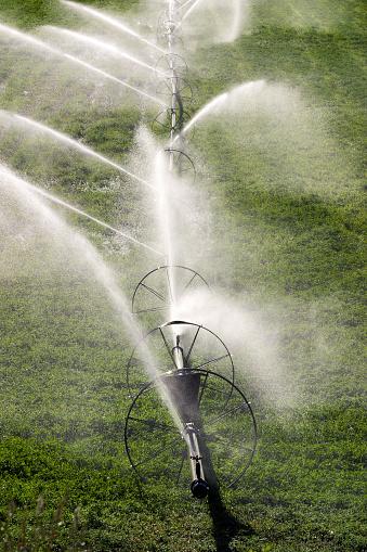 Sprinkler「Watering agricultural field」:スマホ壁紙(13)