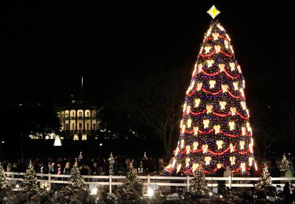 Tree「President And Mrs. Bush Attend National Christmas Tree Lighting」:写真・画像(15)[壁紙.com]