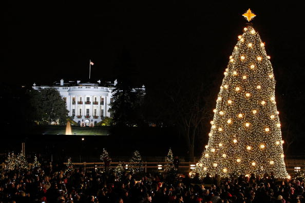 Tree「President And Mrs Bush Attend Lighting Of National Christmas Tree」:写真・画像(16)[壁紙.com]