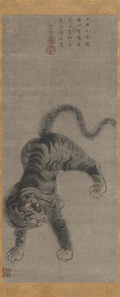 Animals Hunting「Tiger」:写真・画像(13)[壁紙.com]